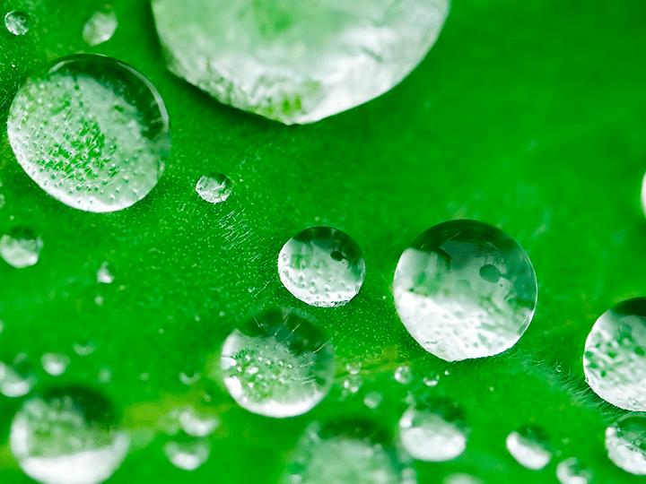 Blog Wasser mit Gedaechtnis KURTS.ch