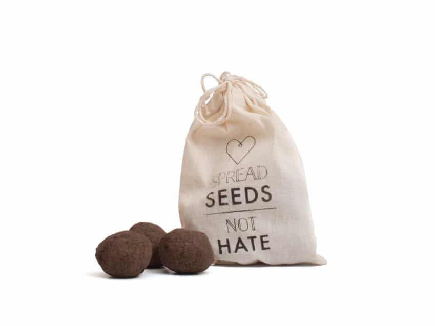 Urban Gardening GorillaGardening Bern Seedballs Spread Seeds not Hate KURTS.ch