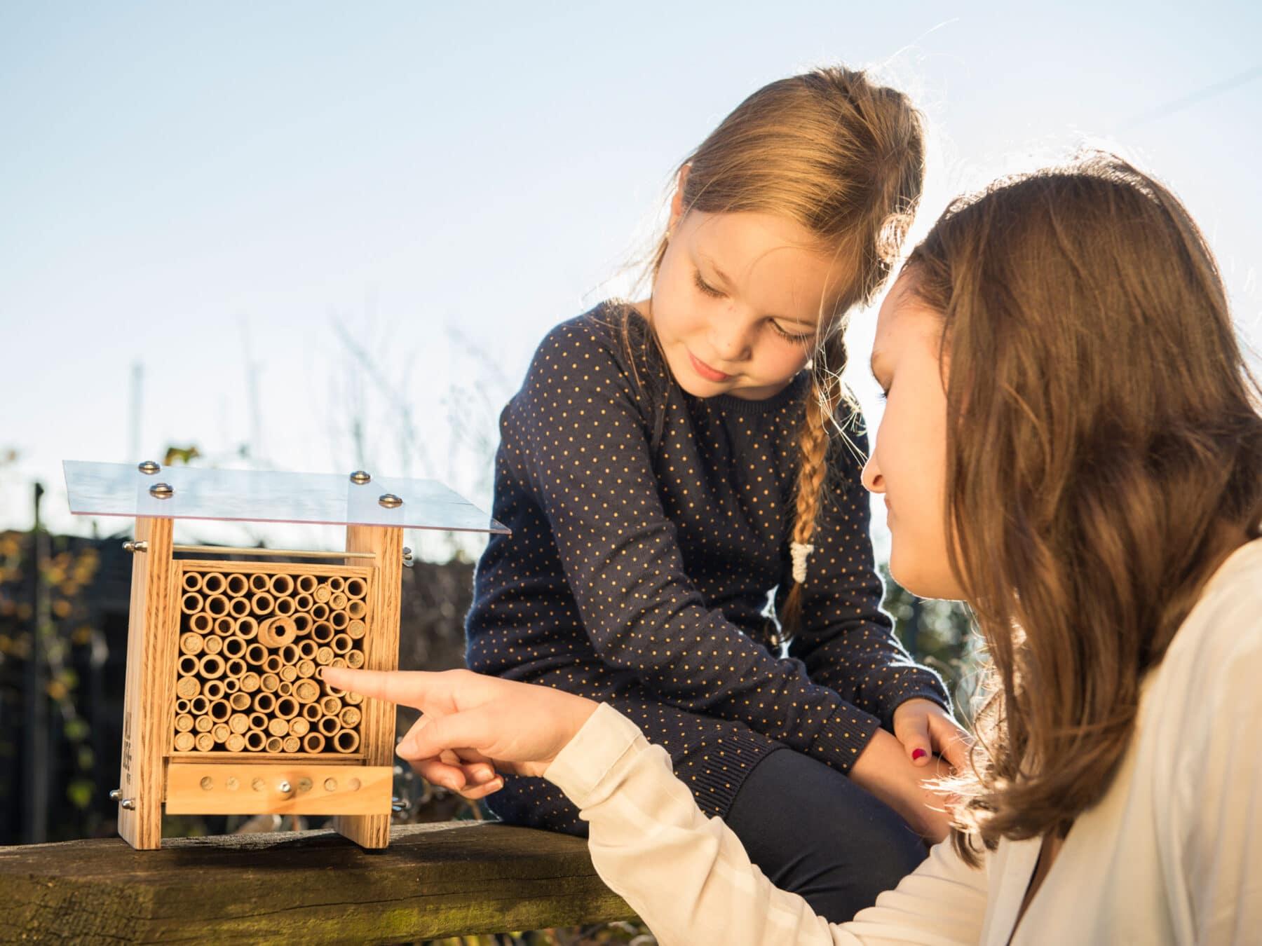 BeeHome Wildbienenhaus Wildbienen beobachten KURTS.ch